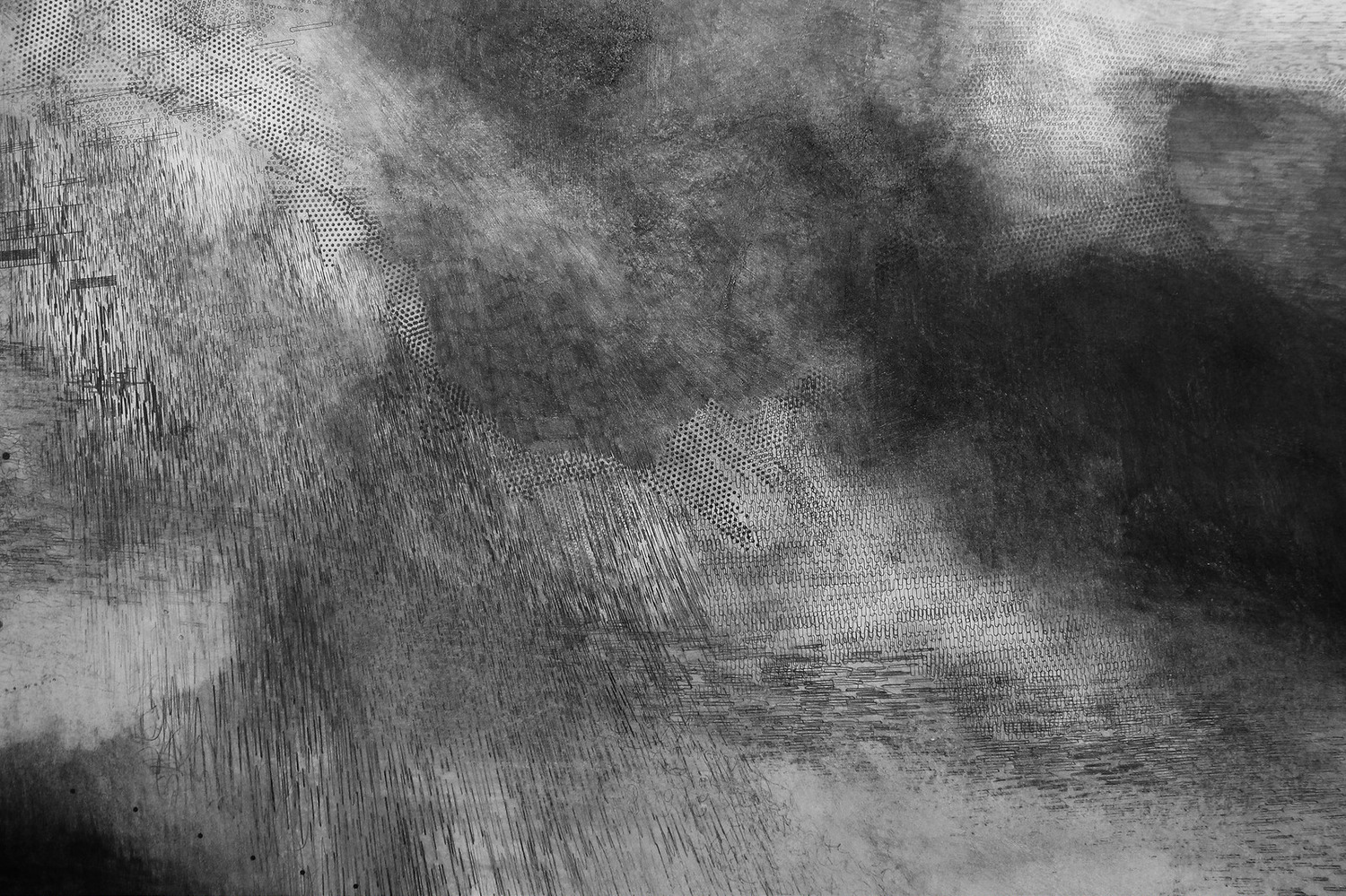 Emma McNally, Choral Field 9, 2014 (detail), graphite on paper