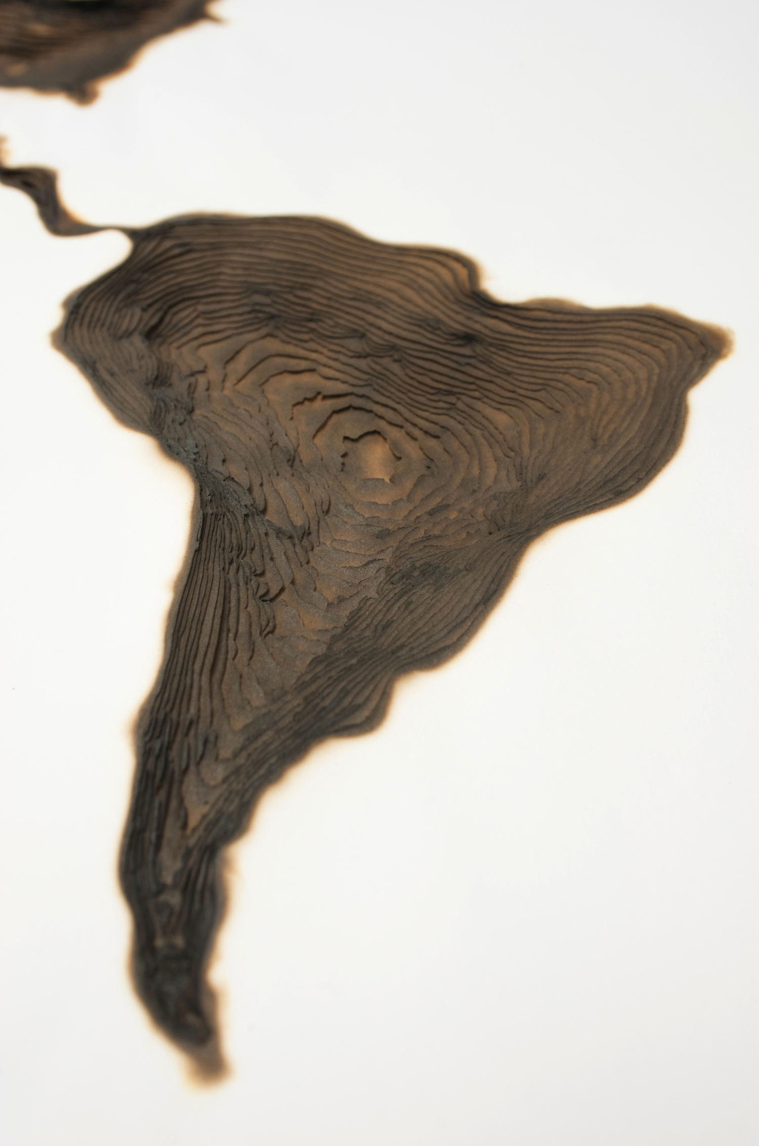 Kate MccGwire, Insular, 2008. Framed piece 50 layers of paper, burnt